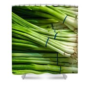 Onion With Chives Shower Curtain