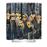 Onions And Barnboard Shower Curtain