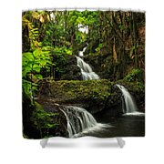 Onomea Falls Shower Curtain