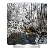 Onomea Stream In Infrared Shower Curtain