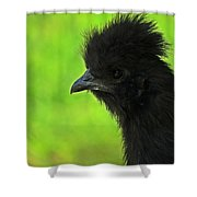 Onyx On Green Shower Curtain