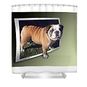 Oof Dog Shower Curtain