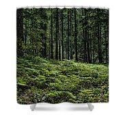 Opal Creek Wilderness Shower Curtain