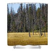 Open Meadow 2 Shower Curtain
