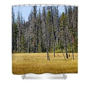 Open Meadow Glacier National Park Shower Curtain