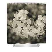 Opening Ceremony Shower Curtain