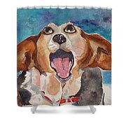 Opera Dog Shower Curtain
