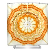 Orange Shower Curtain by Anastasiya Malakhova