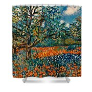 Orange And Blue Flower Field Shower Curtain