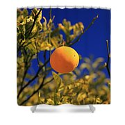 Orange And Blue Sky Shower Curtain