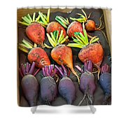 Orange And Purple Beet Vegetables In Wood Box Art Prints Shower Curtain