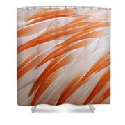 Orange And White Feathers Of A Flamingo Shower Curtain
