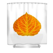 Orange And Yellow Aspen Leaf 3 Shower Curtain