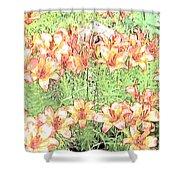 Orange Asiatic Lilies Shower Curtain