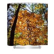 Orange Autumn II Shower Curtain