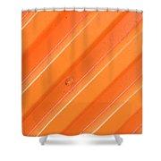 Orange Bolt Shower Curtain