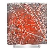 Orange Branches Shower Curtain