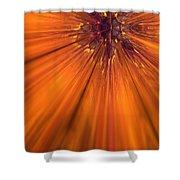 Orange Burst Shower Curtain