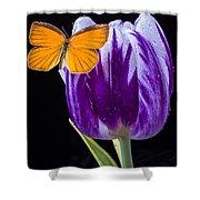 Orange Butterfly On Purple Tulip Shower Curtain