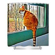 Orange Cat In Window Shower Curtain