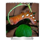 Orange Caterpillar Shower Curtain