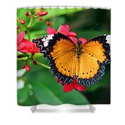 Orange Common Lacewing Butterfly Shower Curtain