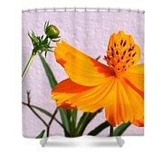 Neon Bright Orange Cosmos Shower Curtain