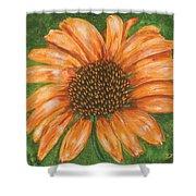 Orange Echinacea Shower Curtain