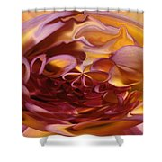 Pink And Yellow Fantasy 3 Shower Curtain