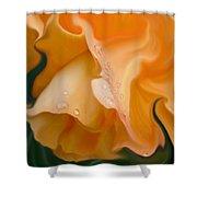 Orange Fantasy Begonia Flower Shower Curtain