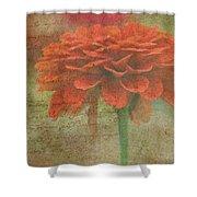 Orange Floral Fantasy Shower Curtain