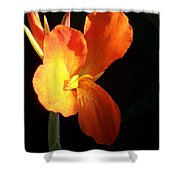 Orange Flower Canna Shower Curtain