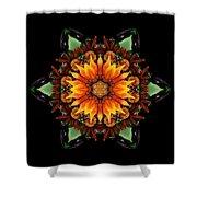 Orange Gazania IIi Flower Mandala Shower Curtain