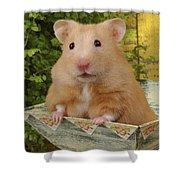 Orange Hamster Ha106 Shower Curtain