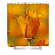 Orange Harmony Shower Curtain