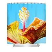 Orange Hibiscus Texture I Shower Curtain