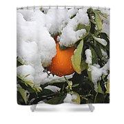 Orange In Snow Shower Curtain