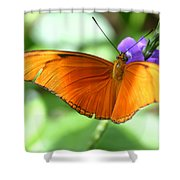 Orange Julia Butterfly Shower Curtain