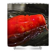 Orange Koi Shower Curtain
