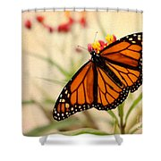 Orange Mariposa Shower Curtain