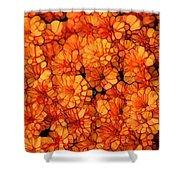 Orange Mums Shower Curtain