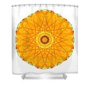 Orange Nasturtium I Flower Mandala White Shower Curtain