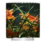 Orange Natural Beauty...   # Shower Curtain
