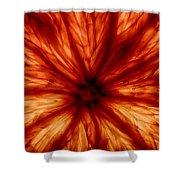 Orange On Fire Shower Curtain