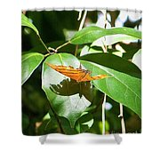 Orange On Green Shower Curtain