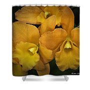 Orange Orchid Group Shower Curtain