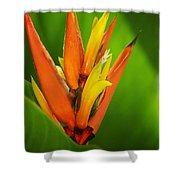 Orange Pocket Fold Shower Curtain