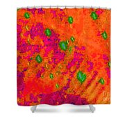 Orange Purple Tapestry Abstract Shower Curtain