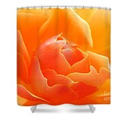 Orange Sherbet Shower Curtain