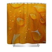 Orange Splash Shower Curtain